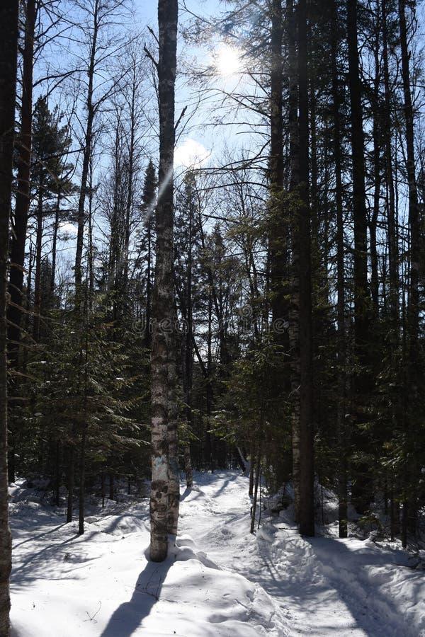 Перемещение к южному Уралу Национальный парк 2018 Taganay стоковое фото