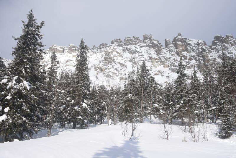Перемещение к южному Уралу Национальный парк Taganay стоковое фото rf