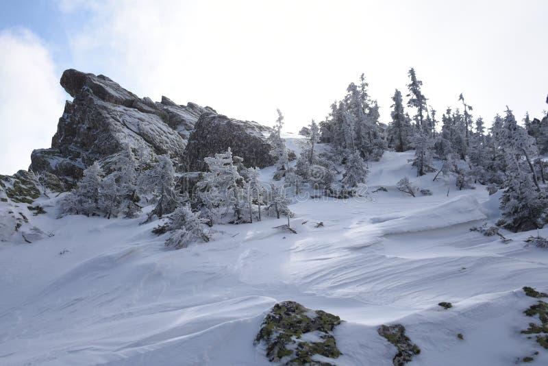 Перемещение к южному Уралу Национальный парк Taganay стоковое изображение rf