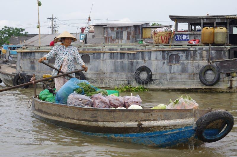 Перепад Меконга вьетнамца стоковое фото rf