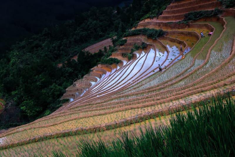 Переплетенная долина стоковое фото rf