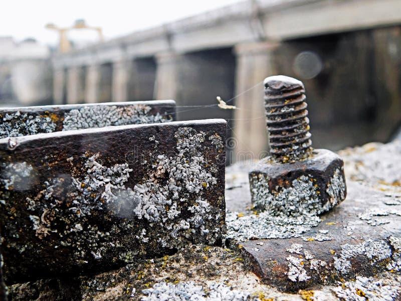 Перерастанный с болтом металла паутины в пасмурной погоде стоковое фото