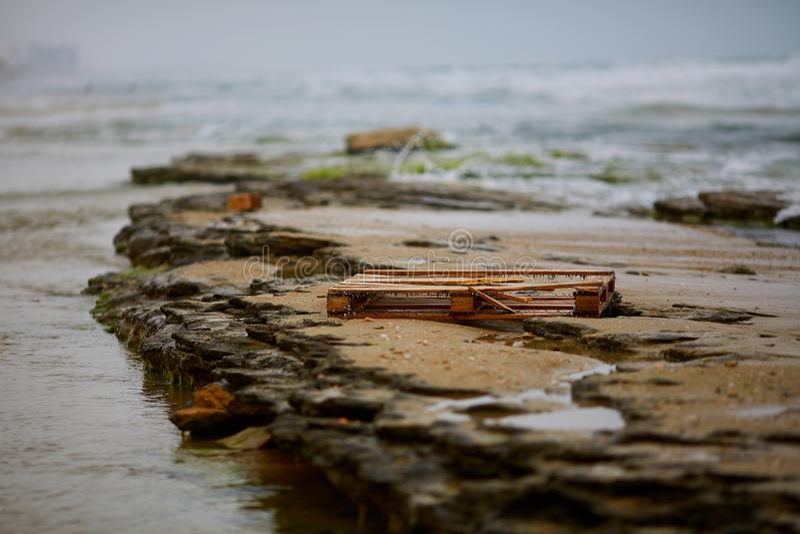 Перерастанный с паллетом водорослей деревянным на красивом пляже песка около Noja, Испания, как символ человеческого присутсвия ` стоковая фотография rf