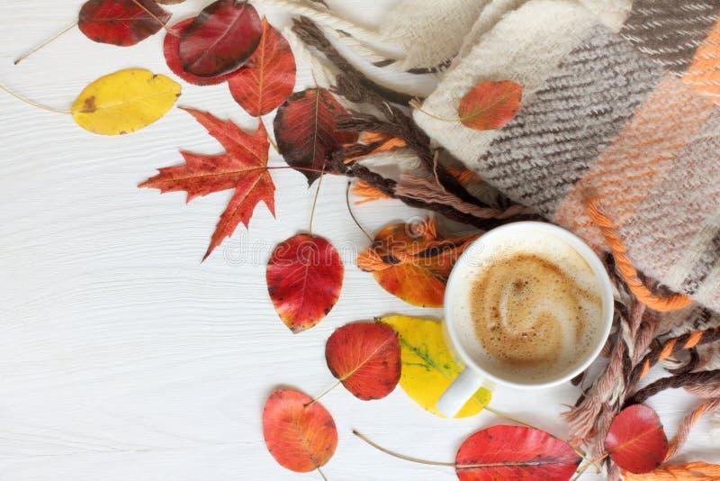 Перерыв на чашку кофе осени стоковое фото