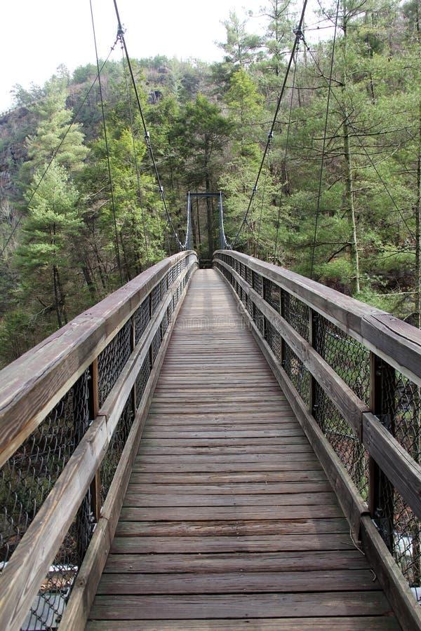 Пересекать мост стоковые фото
