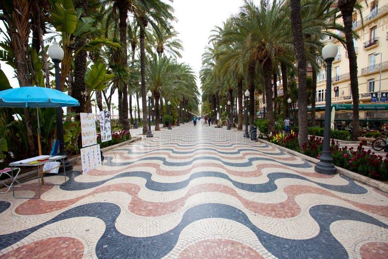 Переулок Alicante ладони стоковые фото