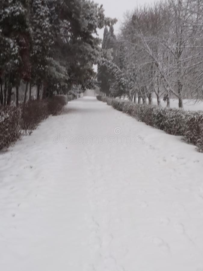 Переулок Snowy стоковая фотография rf