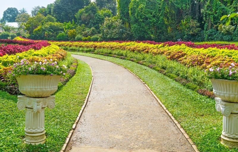 Переулки в цветении стоковые фото