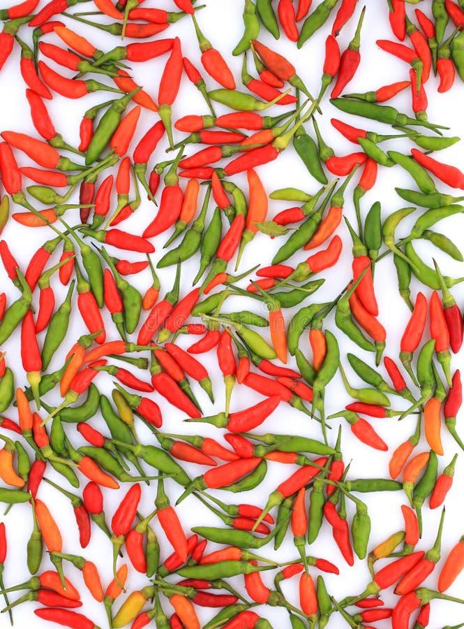 Перец зеленого и красного chili стоковое фото