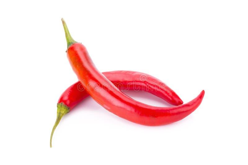 Перец красного chili изолированный на белой предпосылке стоковые изображения