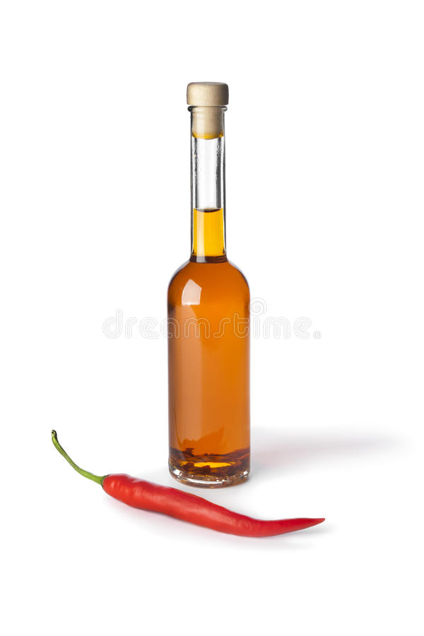 перец масла chili стоковое изображение rf