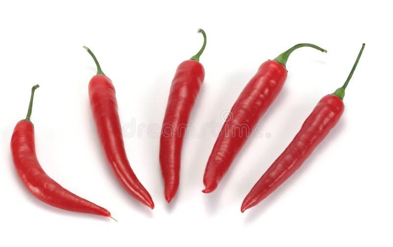 перец chili