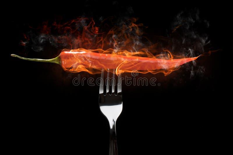 перец chili стоковое фото