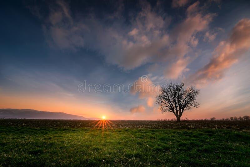 Перед заходом солнца стоковое изображение rf