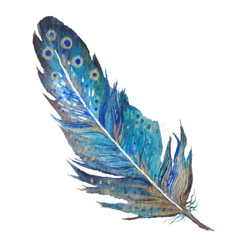 Перо акварели Boho шикарное в цвете сини бирюзы бесплатная иллюстрация