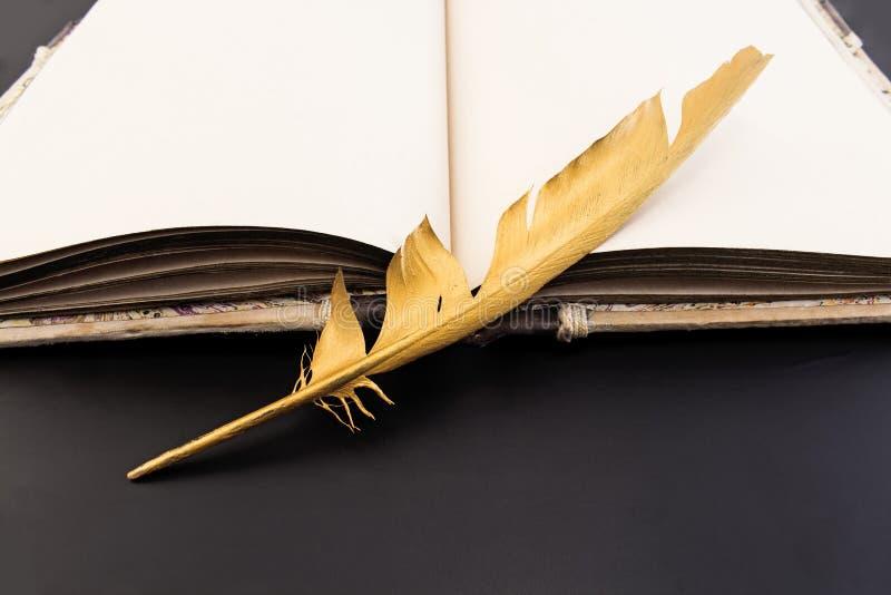 Перо и книга золота на черной предпосылке стоковые изображения rf