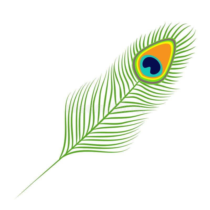Перо павлина Кабель экзотической тропической птицы красочный изолировано Белая предпосылка Плоский дизайн бесплатная иллюстрация