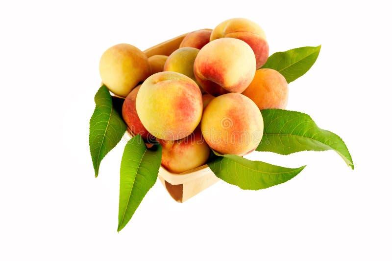 Персики в корзине стоковое фото rf