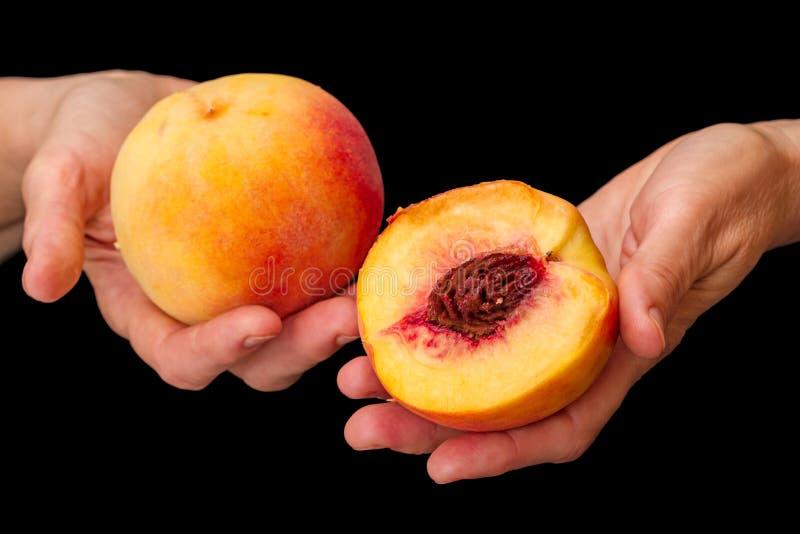 Персики в руках на черноте стоковое фото