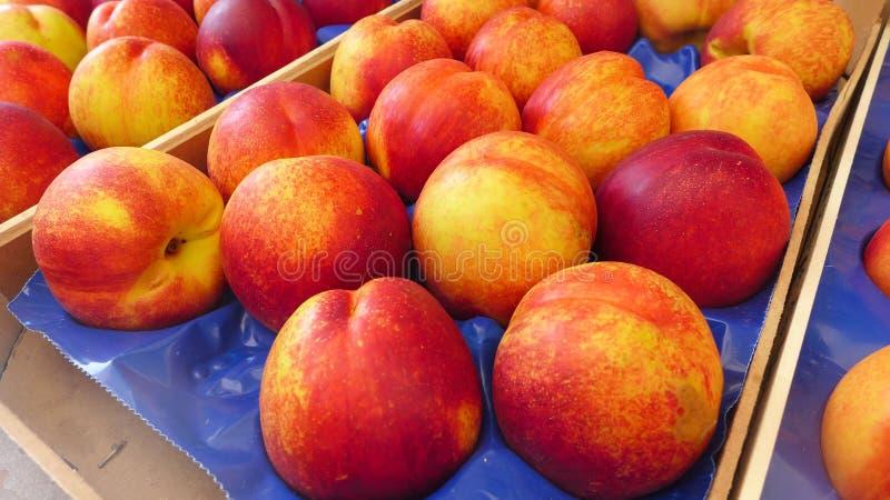 персики сладостные стоковое изображение rf