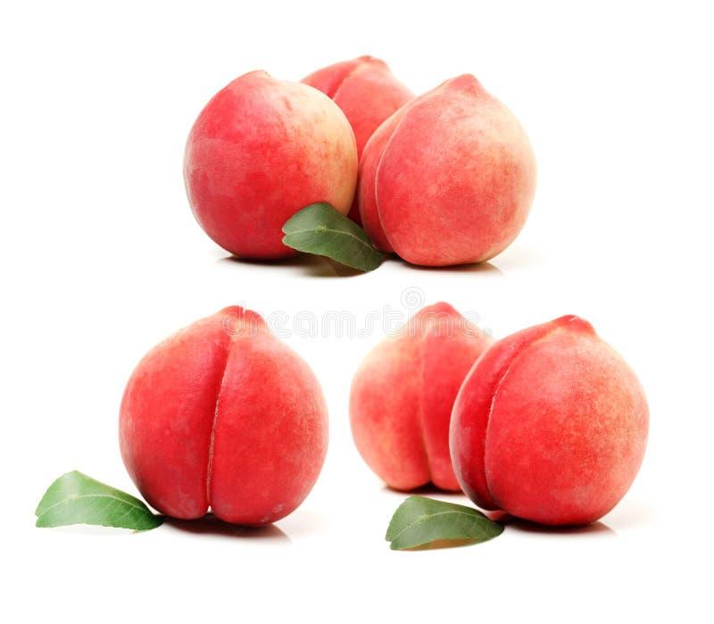 Персик и лист стоковое изображение