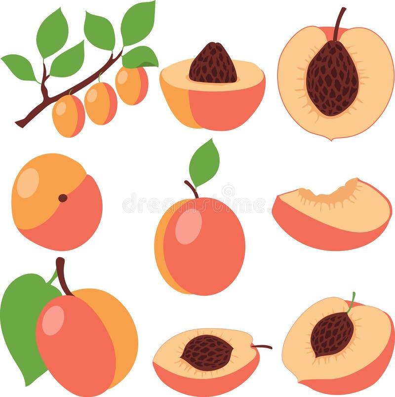 персик Установите персики, части и куски стоковое фото