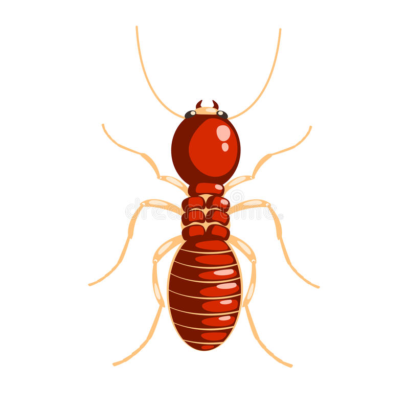 Персонаж из мультфильма насекомого термита красочный бесплатная иллюстрация