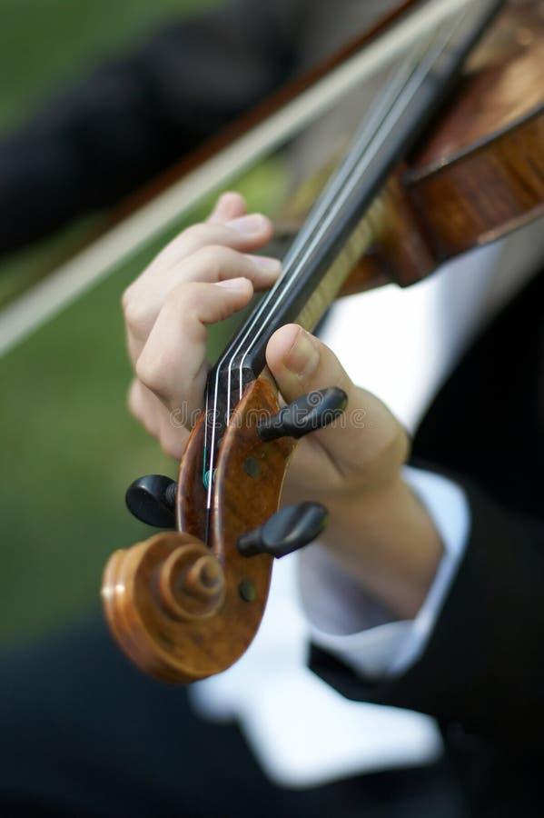 персона играя скрипку стоковые изображения rf