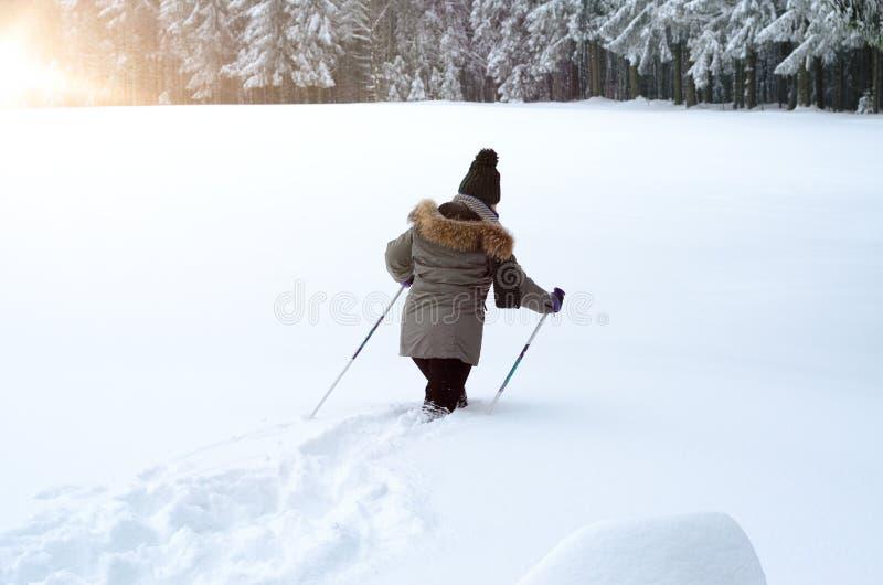 Персона идя идти нордического или по пересеченной местностей стоковая фотография rf