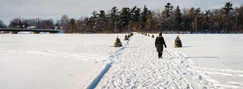 Персона пересекая замороженное реку стоковые фото