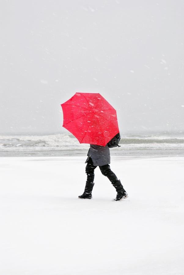Персона с красным зонтиком стоковое фото rf