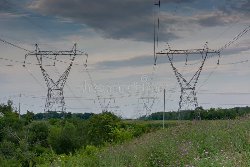 Перспектива башни линии электропередач в зеленом поле с дикими пурпурными цветками стоковые изображения