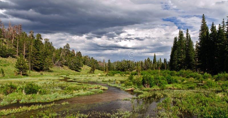 перспектива национального парка горы утесистая сценарная стоковые изображения rf