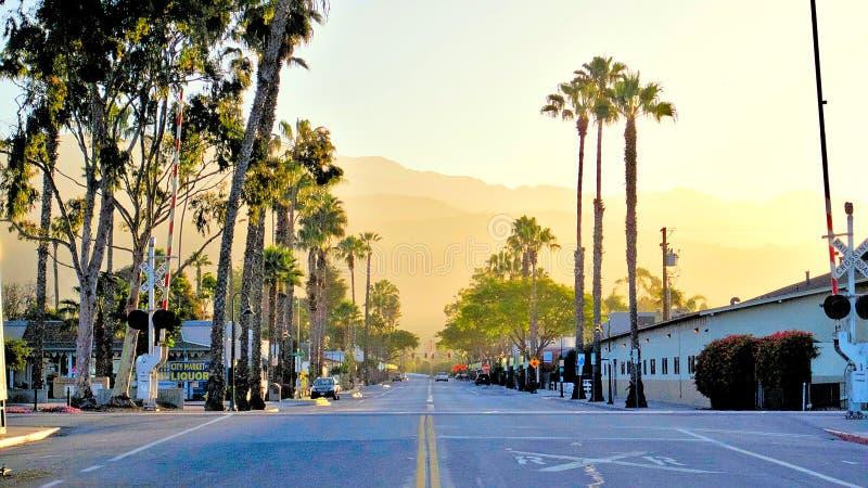 Перспектива улицы с пальмами в восходе солнца утра стоковые изображения rf