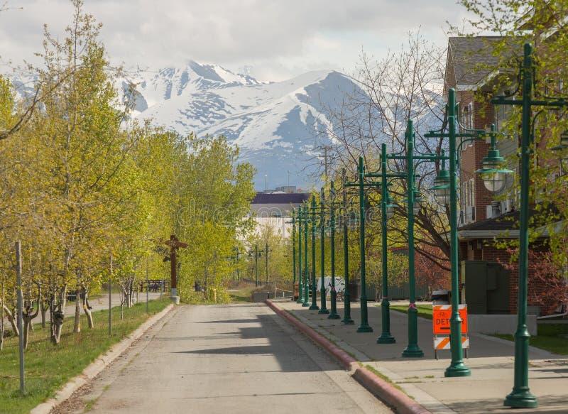 Перспектива уличных светов, гора Аляски стоковые фотографии rf