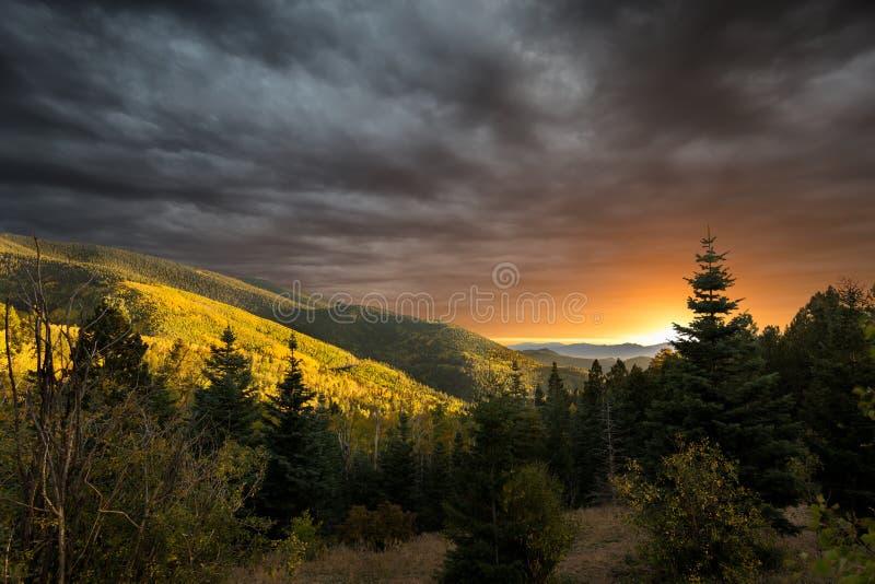 Перспектива Aspen обозревает стоковое изображение