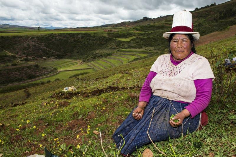 Перуанская женщина около Maras, священная долина, Перу стоковые фотографии rf