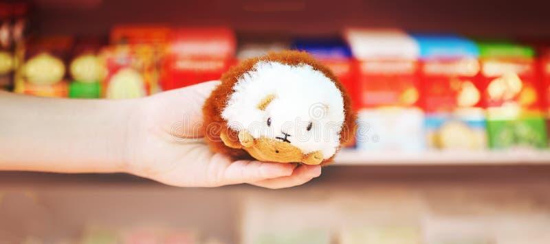 Перуанская морская свинка игрушки в сувенирном магазине Cusco, Перу стоковое фото