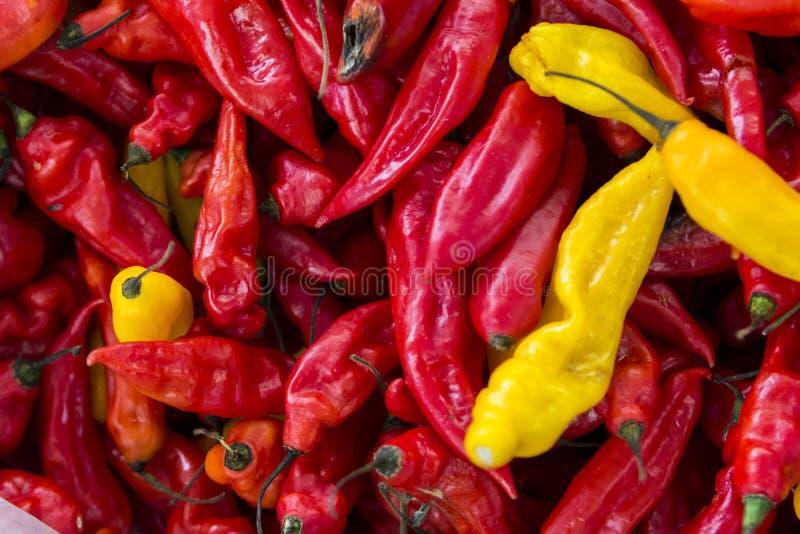 Перуанские чили штабелированные на рынке Urubamba стоковая фотография rf