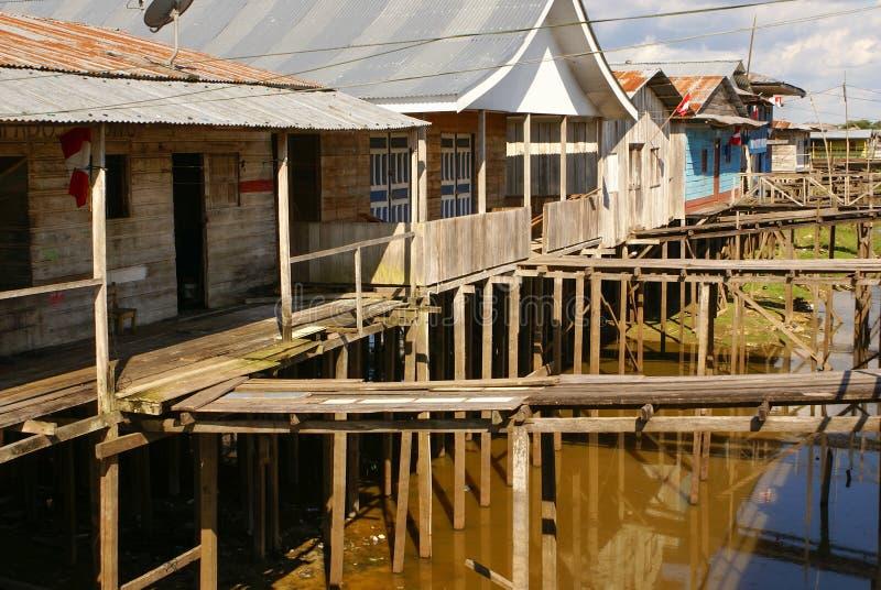 Перу, перуанский ландшафт Amazonas. Настоящий момент типичный ind фото стоковые изображения rf