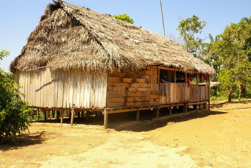 Перу, перуанский ландшафт Amazonas. Настоящий момент типичный ind фото стоковая фотография rf