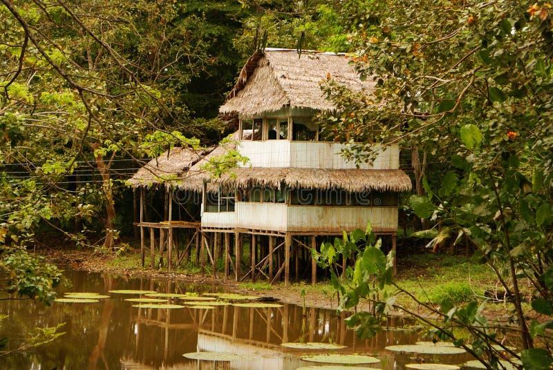 Перу, перуанский ландшафт Amazonas. Поселение племен настоящего момента фото типичное индийское в Амазонке стоковое изображение