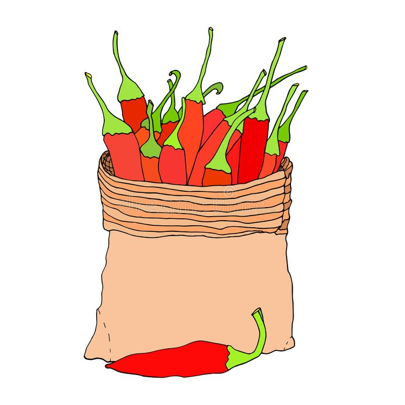 Перцы красных чилей в сумке холста Нарисованный рукой эскиз вектора иллюстрация штока