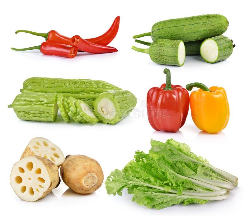 Перцы, салат, тыква губки, Momordica, корень лотоса на белом b стоковое фото rf