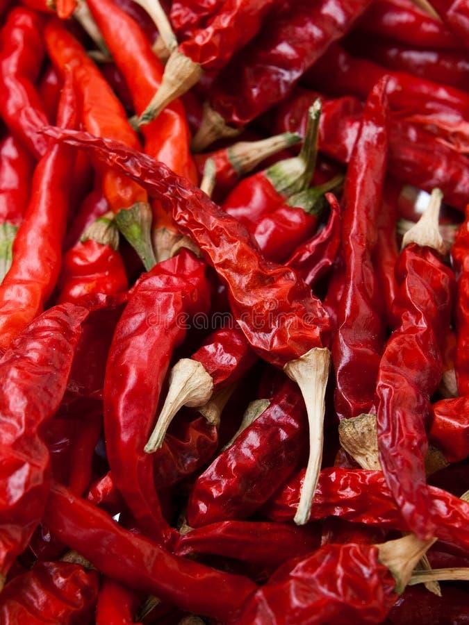 перцы chili горячие красные стоковые изображения