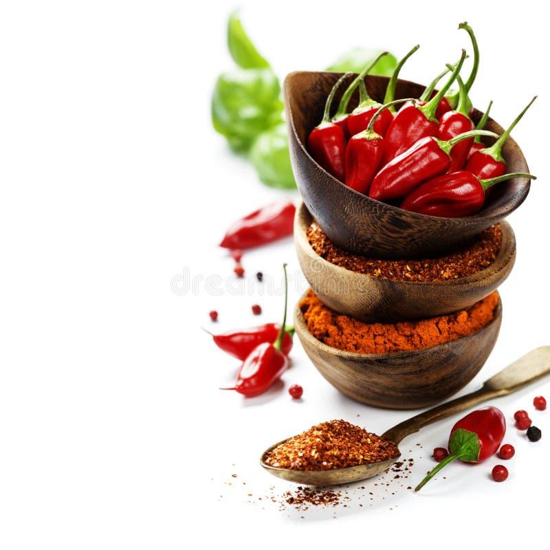Перцы Chili с травами и специями стоковое фото
