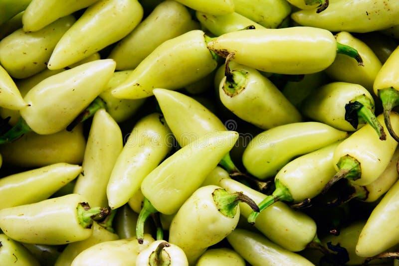 перцы chili стоковое фото