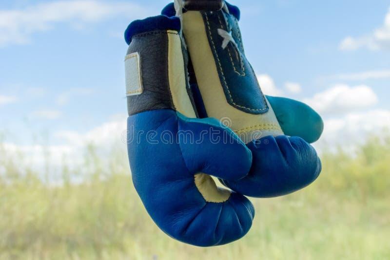 Перчатки бокса сувенира в сини на запачканной предпосылке стоковая фотография