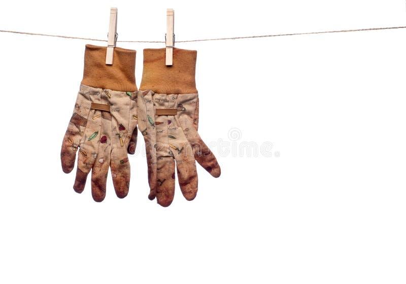 перчатки сада clothesline пакостные вися работу стоковое фото rf