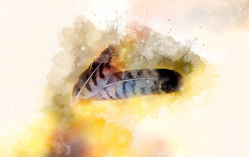 Пер орла и мягко запачканная предпосылка акварели стоковое изображение rf